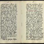 Erinnerungen des Grenadiers Otto Reipert an den Weltkrieg, item 9