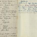 Kriegserinnerungen der Lazarettschwester Marie Delius, geb. Schiele