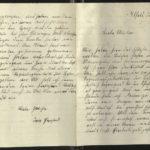Kriegserinnerungen der Lazarettschwester Marie Delius, geb. Schiele, item 37