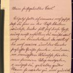 Karl Dinkela schreibt an seine Frau Hedwig, Februar 1915 - Mai 1916