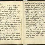 Revolutions-Tagebuch des Marinewachtmeisters Fritz Fabian von der SMS Kronprinz Wilhelm, item 5