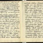 Revolutions-Tagebuch des Marinewachtmeisters Fritz Fabian von der SMS Kronprinz Wilhelm, item 6