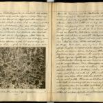 Kriegstagebuch von Hans-Joachim Röhr aus Görlitz - Band 1, item 72