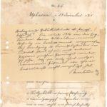 Christian Nikolaus Paulsen - Kriegsschäden in Deutsch-Südwest-Afrika