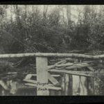 Fotografien vom Kriegsgeschehen von Eduard Scheer, item 18