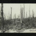 Fotografien vom Kriegsgeschehen von Eduard Scheer, item 229