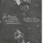 \\'Die Vöglein im Walde, die sangen so wunderschön!\\' Der Gefreite Johann Frühwald im Ersten Weltkrieg