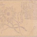 Vier Handgezeichnete Feldpostkarten