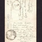 Velddagboek Paul Vandenbussche met o.a. gedroogde klaproos, item 96