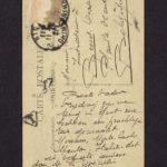 Velddagboek Paul Vandenbussche met o.a. gedroogde klaproos, item 118