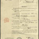 Karty szczepień oraz dokument nadania renty, item 1