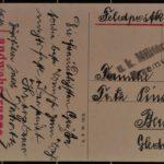 Postkarten an Fritz und Martha Pinsler nach Berlin, item 11