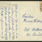 Kanonier Wilhelm Jochens vom 2. Pommerschen Feldartillerie-Regiment 17, item 100