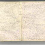 Tagebuch Nr. 2 (Mai 1917-23.12.1917) von Ernst Schwalm (1854-1924), item 3