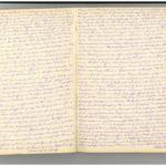 Tagebuch Nr. 2 (Mai 1917-23.12.1917) von Ernst Schwalm (1854-1924), item 4