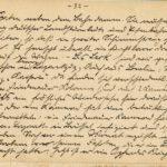Erinnerungen eines Sanitäters in Tagebuchauszügen und Zeitungsausschnitten, item 10