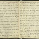 Abschrift der Kriegstagebücher von Sergeant Fritz Apsel, item 8