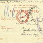 Ing. Ernst Kleiber, 1915, Kriegsgefangenschaft in Turkestan, item 9
