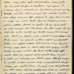 Diary of Gotholds Apsitis-the medical orderly of the 6th Tukums Latvian Rifleman Regiment. May 1916-1919, page 153
