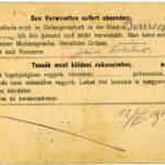 Michael Welles - Kämpfe in Galizien und russische Kriegsgefangenschaft, item 18