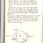 POW diaries - Captain Percival Lowe, item 90
