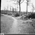 Kriegsfotos Walter Naumann - Negativalbum Nr. 3, Fotos Nr. 201-300, item 53