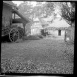 Kriegsfotos Walter Naumann - Negativalbum Nr. 3, Fotos Nr. 201-300, item 79