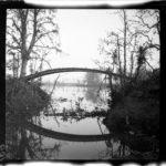 Kriegsfotos Walter Naumann - Negativalbum Nr. 2, Fotos 101 bis 200, item 8