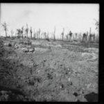 Kriegsfotos Walter Naumann - Negativalbum Nr. 2, Fotos 101 bis 200, item 11