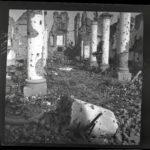 Kriegsfotos Walter Naumann - Negativalbum Nr. 2, Fotos 101 bis 200, item 19