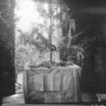 Kriegsfotos Walter Naumann - Negativalbum Nr. 2, Fotos 101 bis 200, item 94