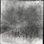 Kriegsfotos Walter Naumann - Negativalbum Nr. 2, Fotos 101 bis 200, item 95