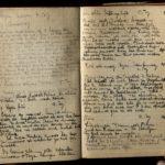 4. Kriegstagebuch von Walter Naumann (April 1917-Juni 1918), item 42