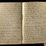 4. Kriegstagebuch von Walter Naumann (April 1917-Juni 1918), item 72