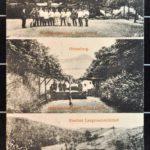 Postkarten aus Herxheim, Annweiler und Albertsweiler von Konrad Mergner, item 3