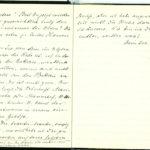Tagebuchaufzeichnungen von Reinhold Sieglerschmidt (1), item 14
