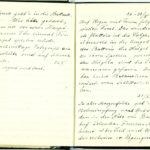 Tagebuchaufzeichnungen von Reinhold Sieglerschmidt (1), item 39