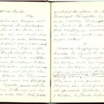 Tagebuch Reinhold Sieglerschmidt (2), item 66
