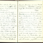 Tagebuch Reinhold Sieglerschmidt (2), item 87