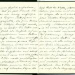 Tagebuchaufzeichnungen Reinhold Sieglerschmidt (3), item 5