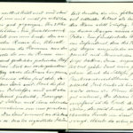 Tagebuchaufzeichnungen Reinhold Sieglerschmidt (3), item 6
