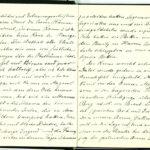 Tagebuchaufzeichnungen Reinhold Sieglerschmidt (3), item 11