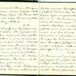 Tagebuchaufzeichnungen Reinhold Sieglerschmidt (3), item 13