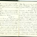 Tagebuchaufzeichnungen Reinhold Sieglerschmidt (3), item 17