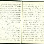 Tagebuchaufzeichnungen Reinhold Sieglerschmidt (3), item 36