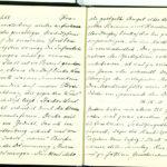 Tagebuchaufzeichnungen Reinhold Sieglerschmidt (3), item 43