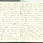 Tagebuchaufzeichnungen Reinhold Sieglerschmidt (4), item 3