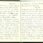 Tagebuchaufzeichnungen Reinhold Sieglerschmidt (4), item 31