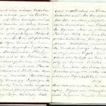 Tagebuchaufzeichnungen Reinhold Sieglerschmidt (7), item 5