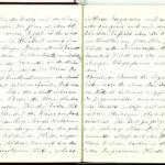 Tagebuchaufzeichnungen Reinhold Sieglerschmidt (7), item 19